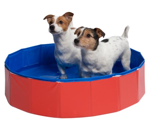 petsplace hondenzwembad_2